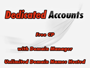 Cut-rate dedicated server hosting services